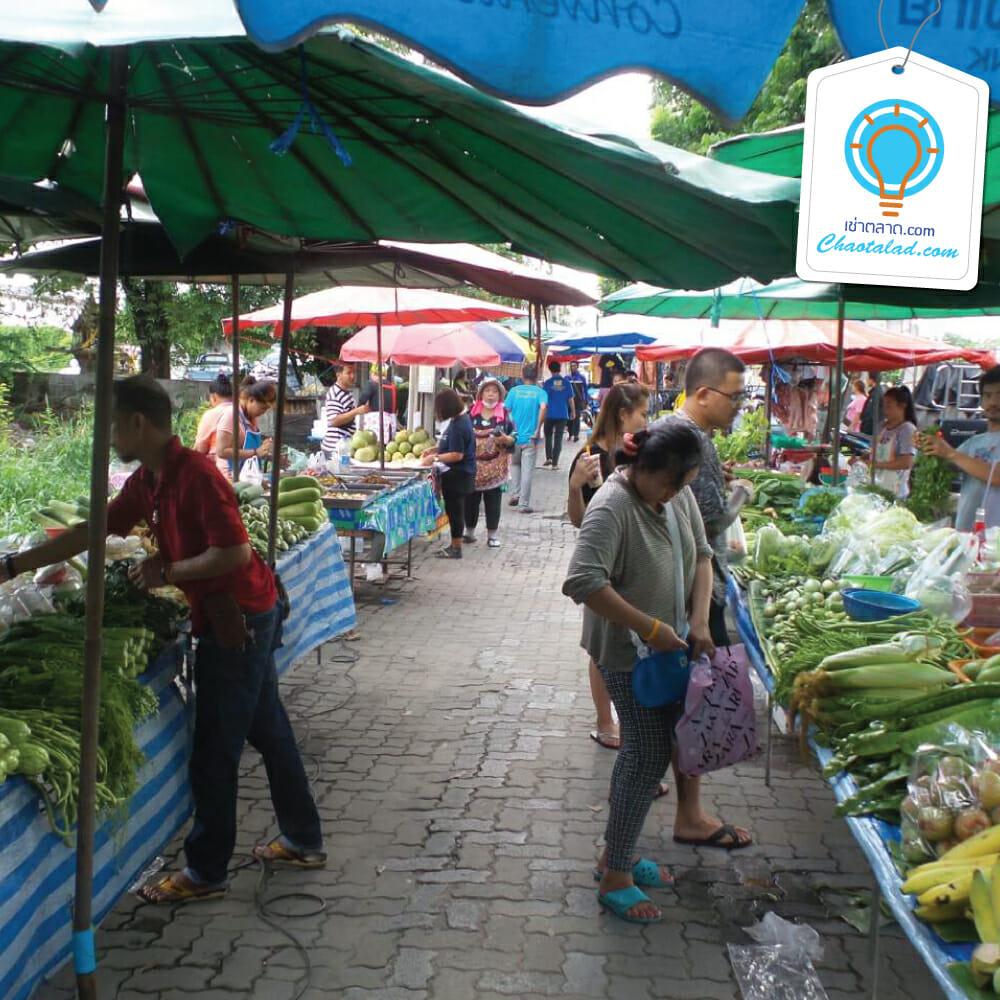เช่าตลาด ขายของตลาดนัด หาที่ขายของตลาดนัด หาที่ขายของตลาดกลางคืน จองพื้นที่ว่างขายของตลาดนัด พื้นที่ขายของตลาดสด พื้นที่ขายของในตลาดสด